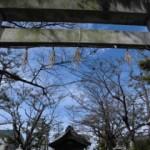 151101_秋の神社1